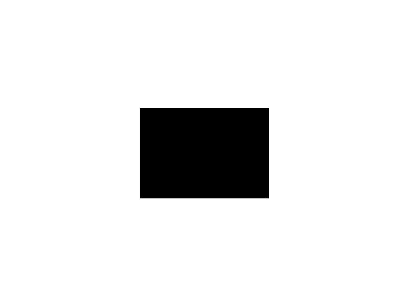 Zumba 4