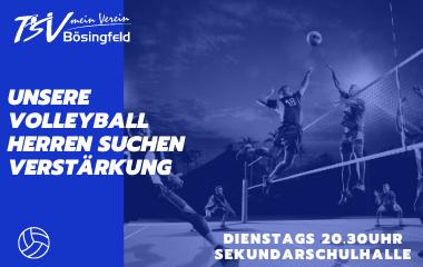 Unsere Volleyball Herren suchen Unterstützung!